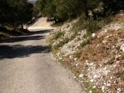 Balade moto dans les calanques le 07 avril 2013 - thumbnail #22