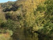 Balade moto dans le Cantal le 27 octobre 2013 - thumbnail #140