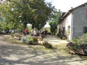 Balade moto dans le Cantal le 27 octobre 2013 - thumbnail #151