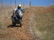 BMW Motorrad International GS Trophy Female Team Qualifyer - thumbnail #140
