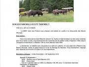 A LA DECOUVERTE DES BISONS D'EUROPE - thumbnail #2