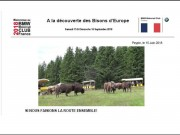 A LA DECOUVERTE DES BISONS D'EUROPE - thumbnail #1