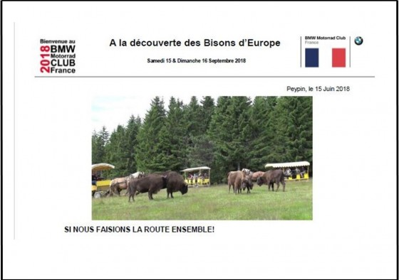 A LA DECOUVERTE DES BISONS D'EUROPE - large #1